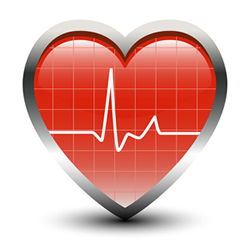 Heart Rate: Does It Make a Difference with Exercise?