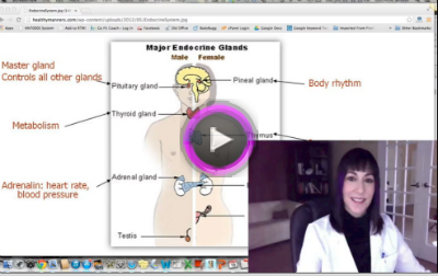 GoFitCoach.tv Episode #30: The Symptoms Series…Adrenal Fatigue